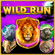 Wild Run Online Slot